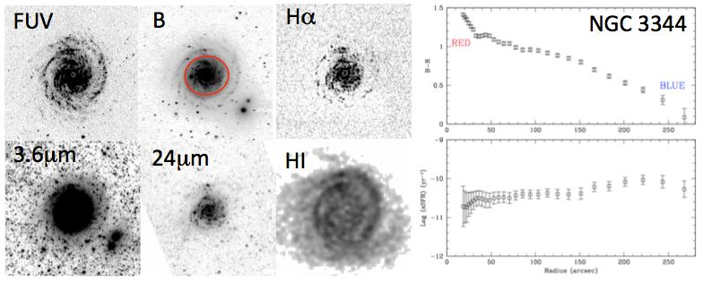 Figure 4: Multi-wavelength images of the nearby galaxy NGC 3344, illustrating the different structural features that are visible at different wavelengths.
