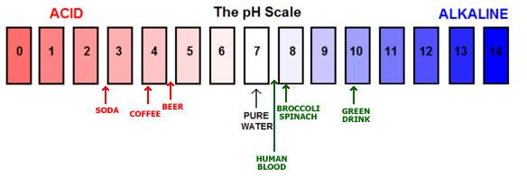 What is ph? Water not only serves as the solvent in solutions of acids and bases, it also plays a role in the formation of the ions.