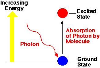 In a chloroplast, excited electrons are passed from molecule to molecule until it reaches the REACTION CENTER (the