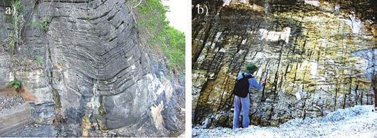 Chapter 9. Stone Heritage of Vietnam 2.4 Karstification Figure 3. Stratified, bent and fractured limestones in outcrop.