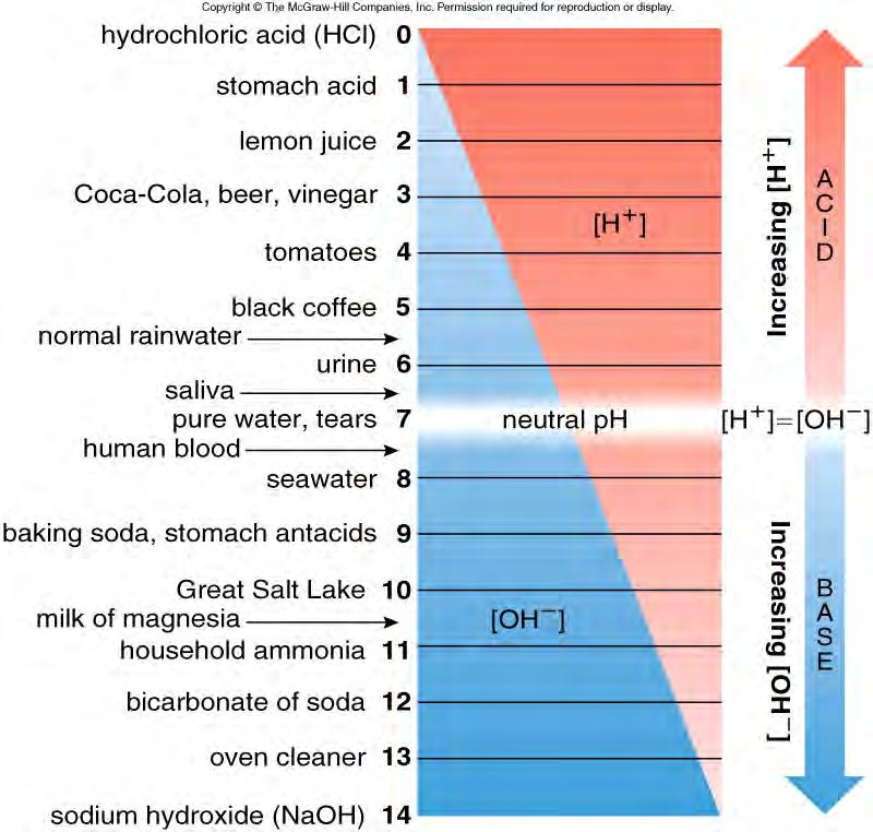 ph scale is logarithmic ea unit reflects a 10-fold change in [H + ] higher ph value = lower [H + ]