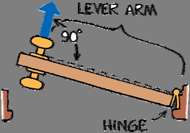 11.1 Torque When a is applied, the lever arm is the distance between the doorknob and the edge