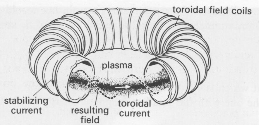 Tokamak source: