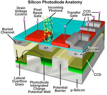 Photodiodes and other