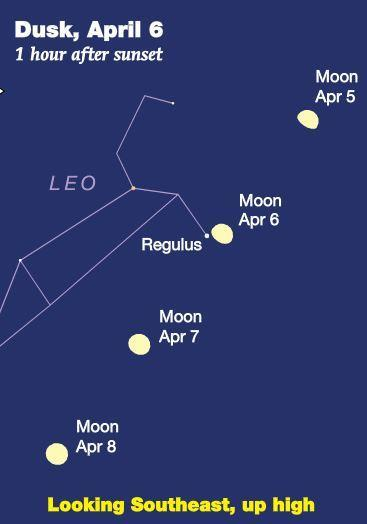 April 2017 Sky Events Regulus and the Gibbous Moon The evenings of Thursday, April 6 th, and Friday, April 7 th, will provide a fine opportunity to let the waxing gibbous moon guide you to the bright