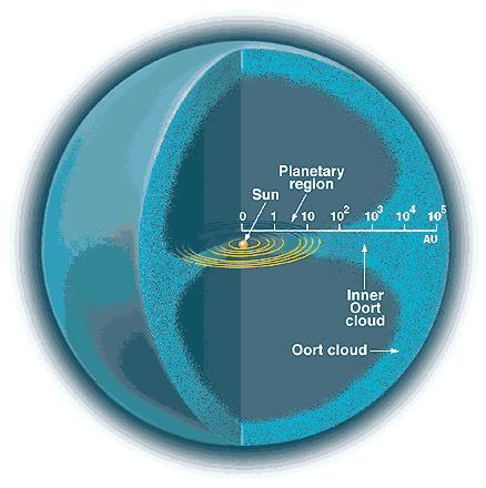 Anatomy of the Solar System Oort Cloud