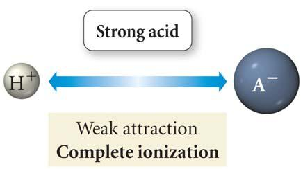 Strengths of Acids & Bases commonly, acid or base strength is measured by determining the equilibrium constant of a substance s reaction with water HAcid + H 2 O Acid -1 + H 3 O +1 Base: + H 2 O