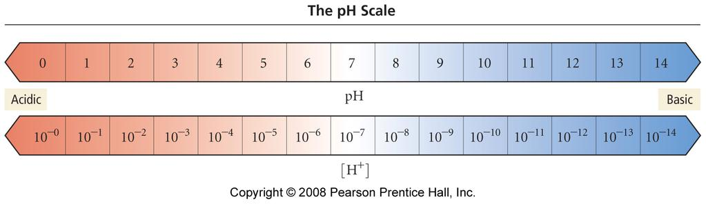 ph the lower the ph, the more acidic the solution; the higher the ph, the more basic the solution 1 ph unit corresponds to a factor of 10