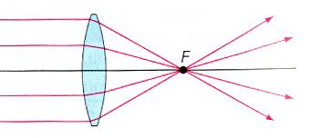 A convex lens (thick in the middle) focuses