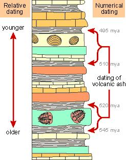 the oldest layers are found at the bottom, and the younger layers are on