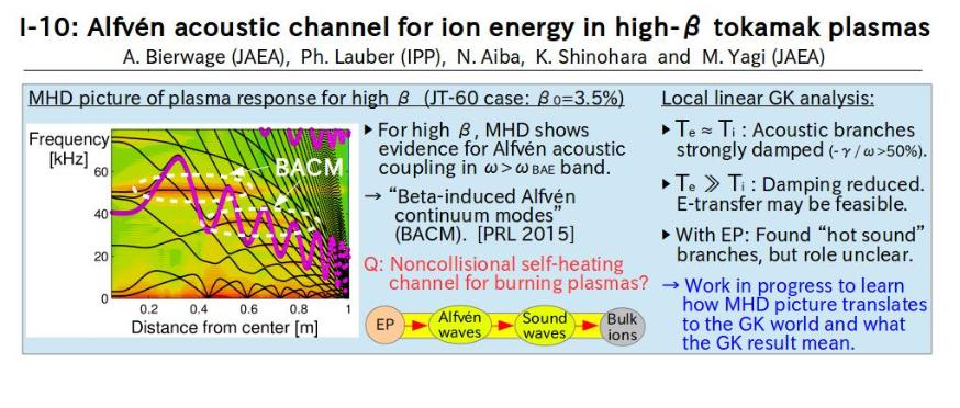 A. Bierwage (I-10) Introductory Talk that Asks the question of whether we can heat ions having unstable beta Alfven waves heat plasma by simultaneously