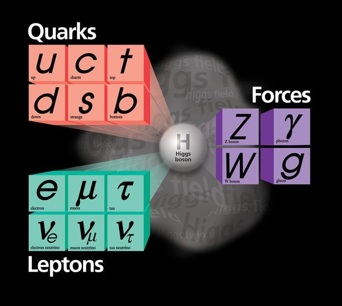 Standard Model and Discovery of the Higgs Higgs boson is proposed to