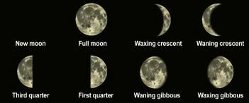 Moon Phases What does the moon look like