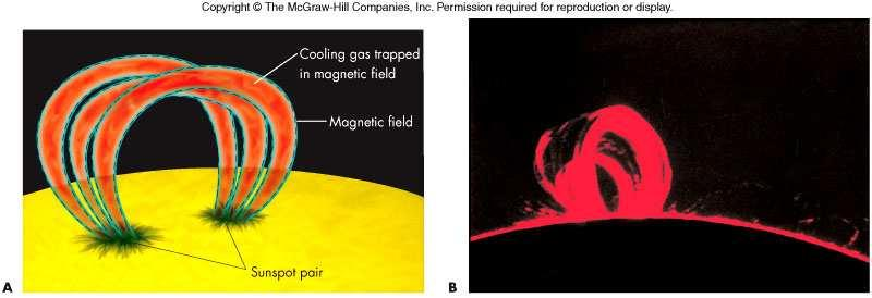 Cool prominence gas is confined by its high magnetic field and hot