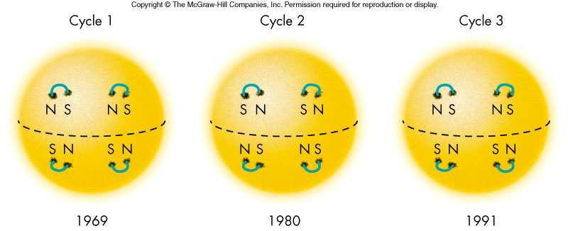 the surface) as repeats 45 it goes 46 The Sun undergoes differential rotation, 25 Changes in the Solar Cycle Solar Cycle and Climate The cycle may vary from 6 to 16 years