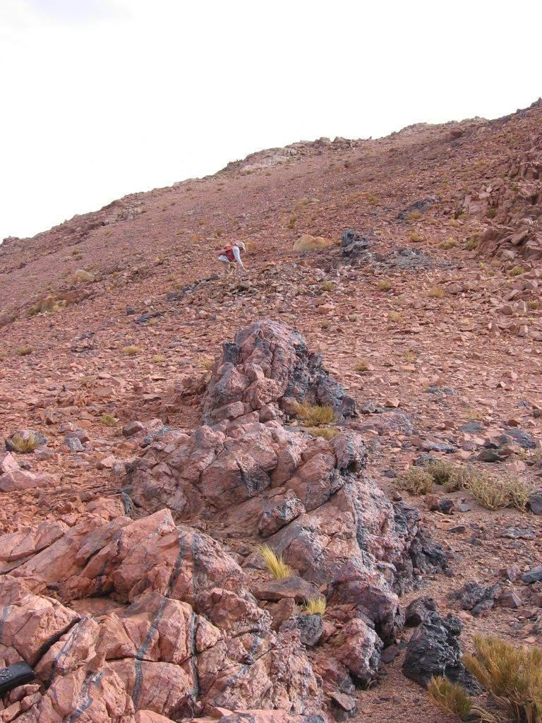 investigation of the Taca Taca Arriba porphyry which has been