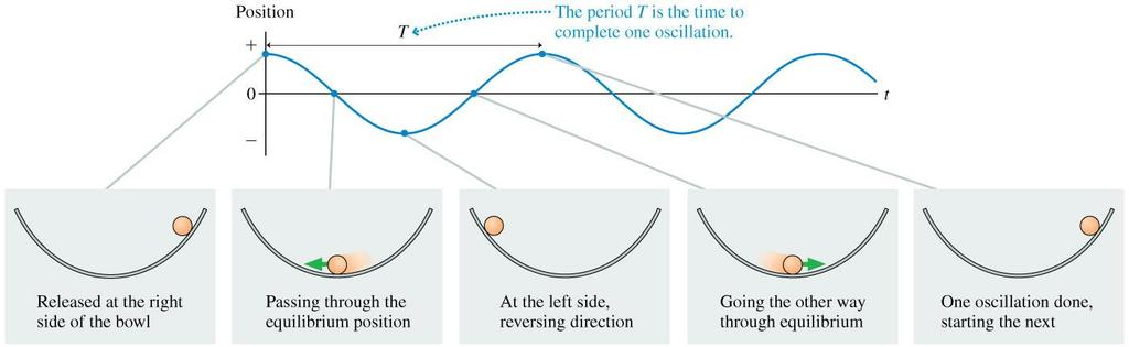 Oscillatory Motion The graph of an oscillatory motion has the form of a cosine function.