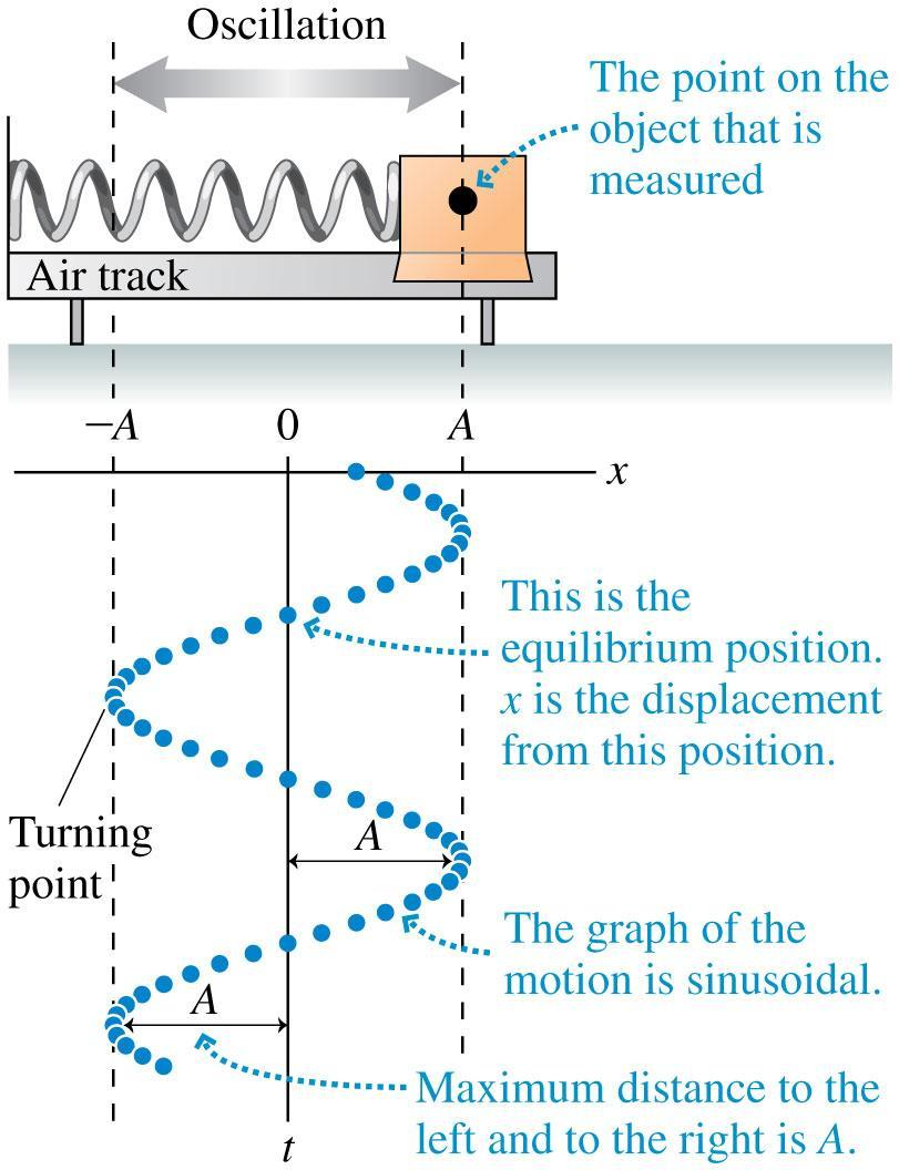 Motion of a Mass on a Spring The amplitude A is the object s maximum displacement from equilibrium.