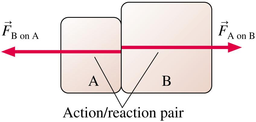 Interacting Objects If object A exerts a force on object B, then object B exerts a force