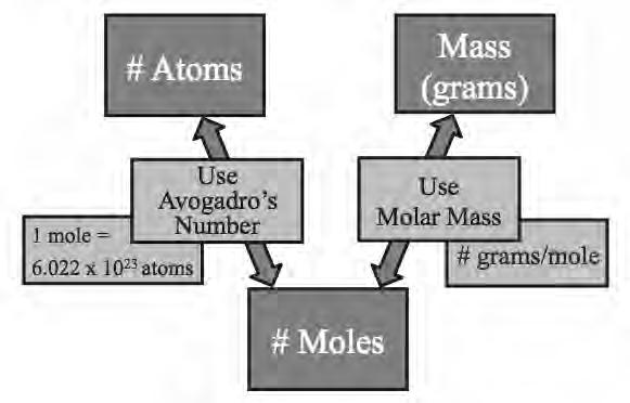 Converting Between the Number of Atoms and Grams Example: (atoms to grams) What is the mass of 2.