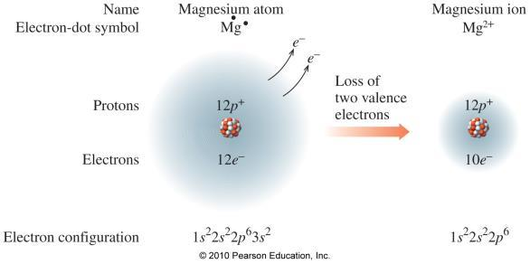A cation has fewer electrons than protons. By losing electrons, a metal atom forms a cation with a completely filled outer shell of electrons. Anions are negatively charged ions.