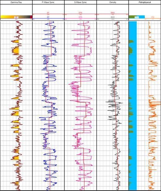 Figure 2. Representative well logs for the field. The gamma-ray log is coloured by Vshale, and the effects of lithology on the sonic data can be seen.