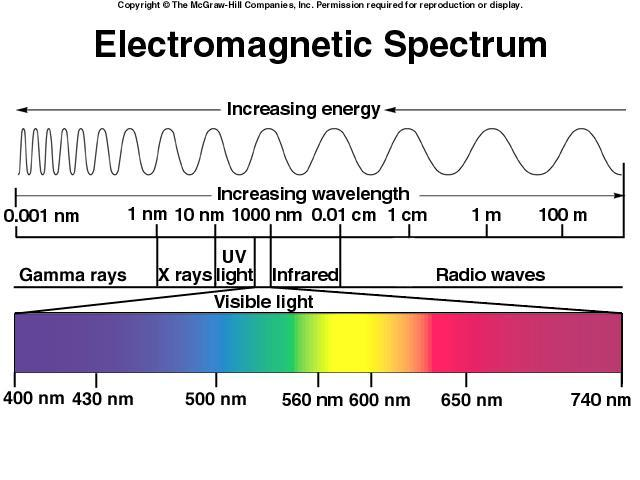Light form the sun is composed of a range of wavelengths (colors). The visible spectrum to the left illustrates the wavelengths and associated color of light.