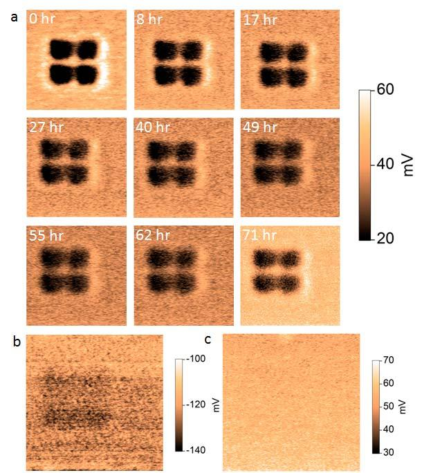 A B C Fig. S8. Retention of ferroelectric domains.