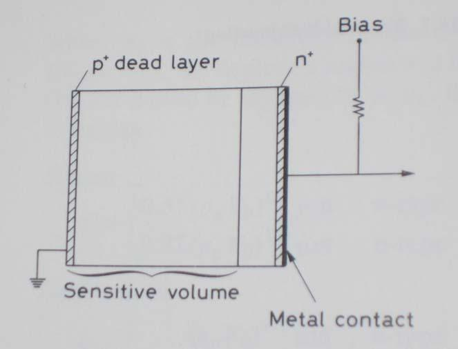 Detector characteristics of Semiconductors Basic configuration for operating a junction diode as a radiation detector: Electrodes must be fitted on the Two sides of the semiconductor But: remember