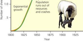 113 No Population Can Grow Indefinitely: J Curves and S Curves (2) Environmental resistance All factors that act to limit the growth of a population Carryingcapacity (K) Maximum population a given