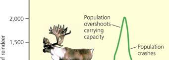 114 Mature Male White Tailed Deer When a Population Exceeds Its Habitat s Carrying Capacity, Its Population Can Crash A
