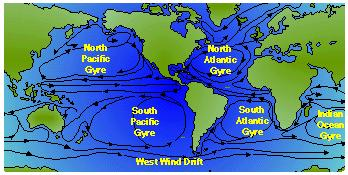 Surface Current Flow The first five are gyres because the water flows around the edge of an ocean basin.