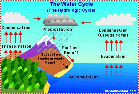 Precipitation Precipitation describes the different forms of water that originate in the atmosphere and fall onto land and water surfaces.