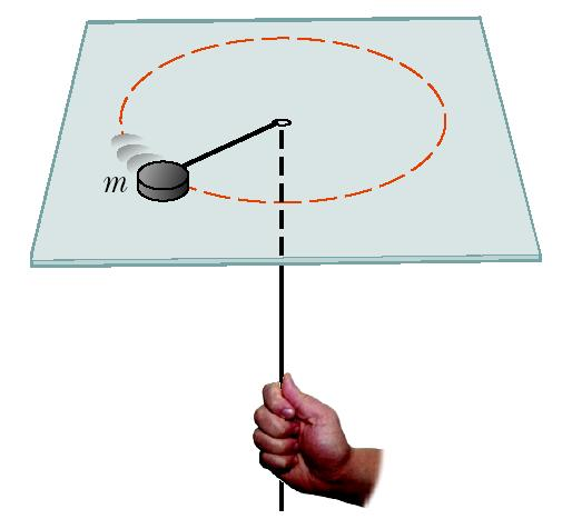 51. The puck in Figure P8.51 has a mass of 0.120 kg. Its original distance from the center of rotation is 40.0 cm, and it moves with a speed of 80.0 cm/s.