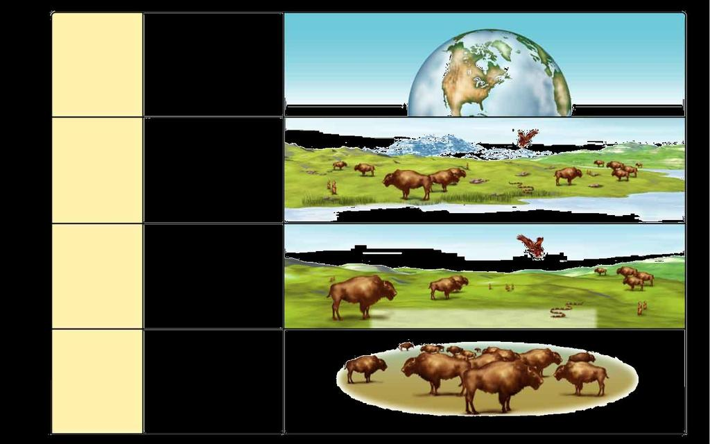 Section Levels 1-3 of Organization Biosphere Ecosystem The part of Earth that contains all