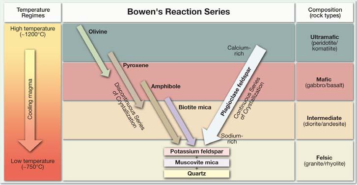 Bowen s s reaction series Series of chemical reactions that take place in silicate magmas as they cool First investigated in the