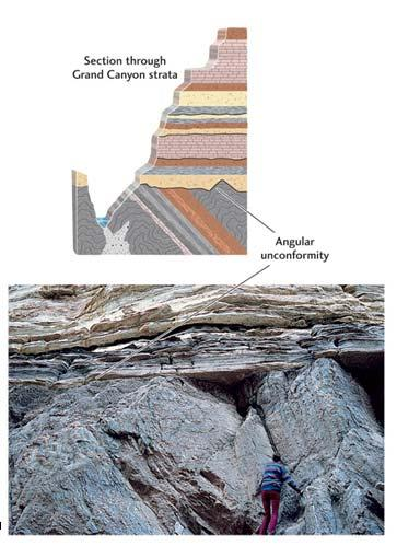5 An unconformity is a surface between two rock layers representing a layer that never formed or was eroded away.