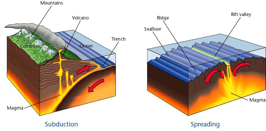 Chapter 1, Section 2 Understanding the Past According to the theory of plate tectonics, the lithosphere is broken up into a number of moving plates, on which continents and oceans