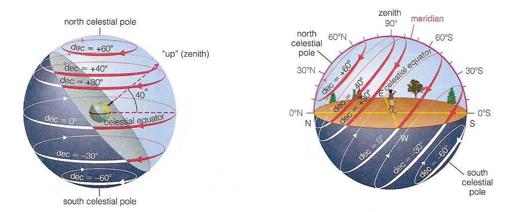 Observer located at latitude 40 degrees N The latitude is the angle from the zenith to the Earth s equator.