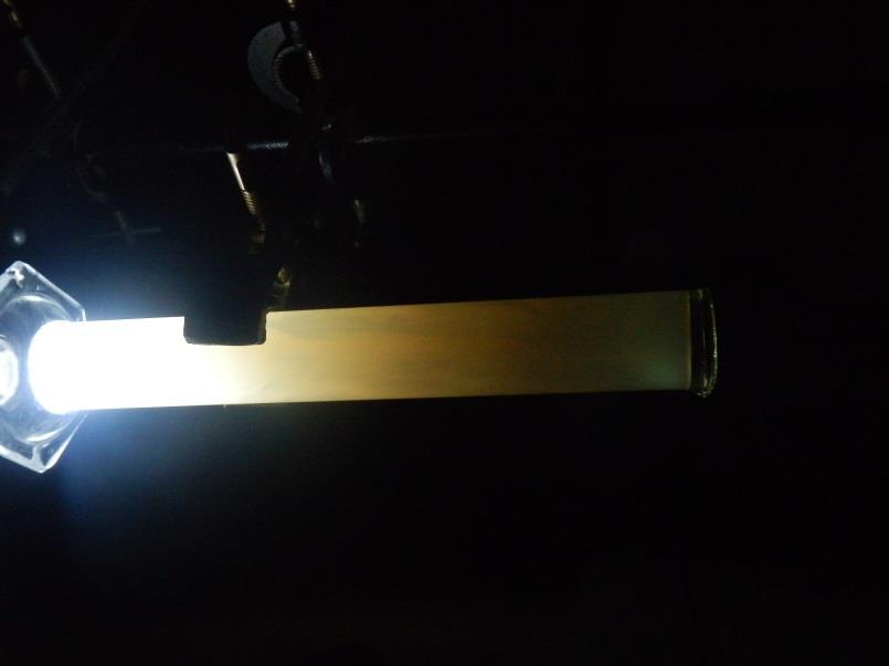 Undergrad student activities in lab: Demonstrating Optical Rotation and Birefringence On the eve of IIST s