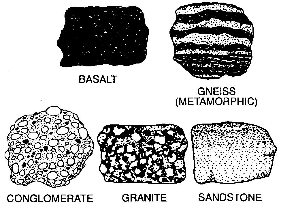 21. Base your answer to the following question on the diagrams below of five rock samples.