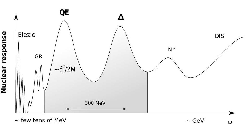 1.1 Motivation Figure 1.1: Schematic overview of the nuclear response to a electroweak probe as a function of the energy transfer ω. Taken from Ref. [Pra9].