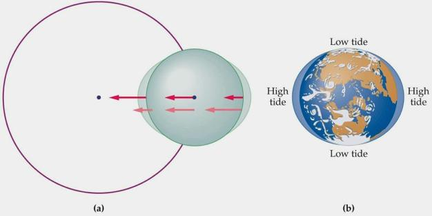 Tides This figure illustrates a general tidal force on the
