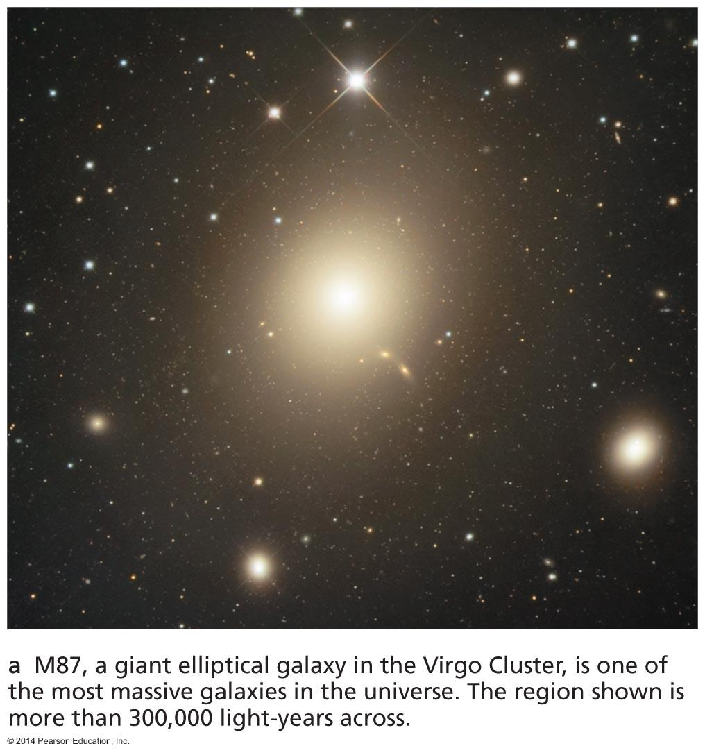 Elliptical galaxy: all spheroidal component, virtually no