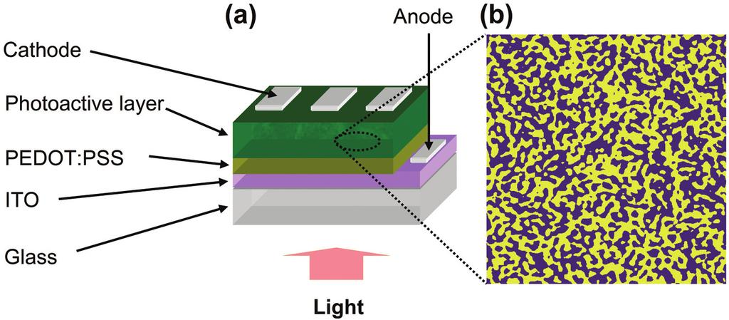 Photoconductive AFM of Organic Solar Cells APP NOTE 15 Photoconductive Atomic Force Microscopy for Understanding Nanostructures and Device Physics of Organic Solar Cells Xuan-Dung Dang and Thuc-Quyen