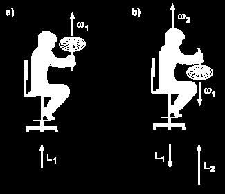 Example: A person sitting on a chair that can rotate is initially at rest and holding a bicycle wheel which is spinning with its angular momentum vector in the vertically up direction and with