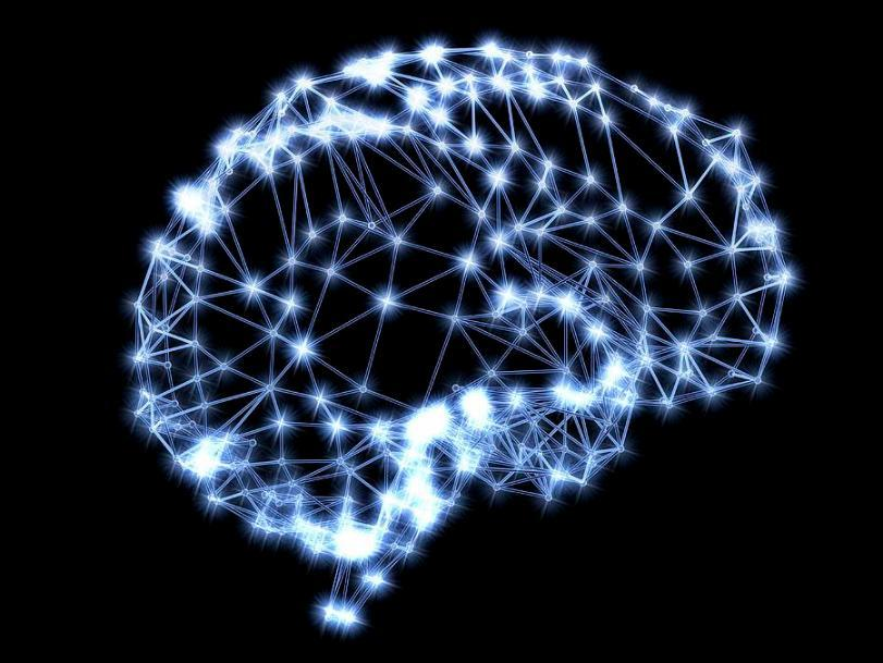 WHAT ARE ARTIFICIAL NEURAL NETWORKS? The brain basically learns from experience.