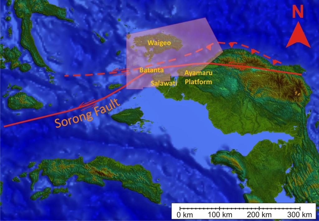 INTRODUCTION The area of main concern: Bounded by Waigeo island on the NW; Ayamaru Platform, Salawati, and