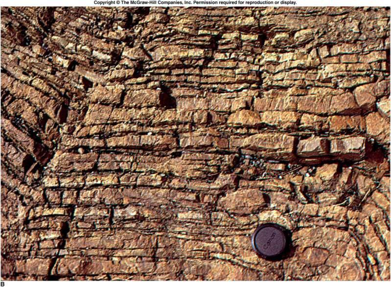 Chemical Sedimentary Rocks Chert Hard, compact, fine-grained, formed almost entirely of