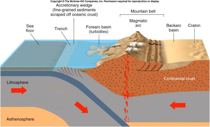 Plate Tectonics and Sedimentary Rocks Convergent boundary: Rapid erosion: coarse-grained clastic